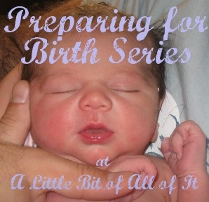A Little Bit of All of It Preparing for Birth Series