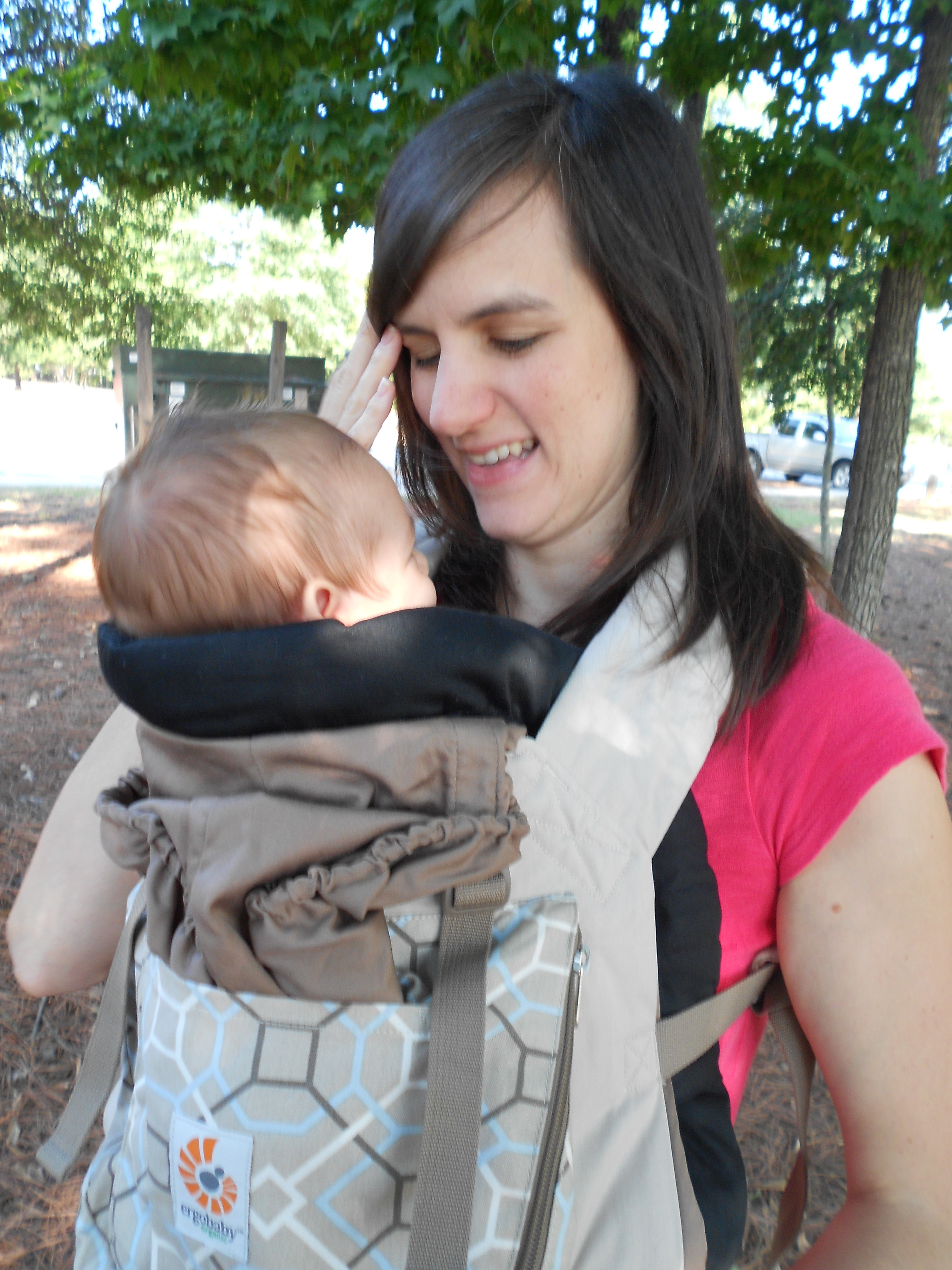 Soft Structured Carriers Galore A Little Bit Of All Of It